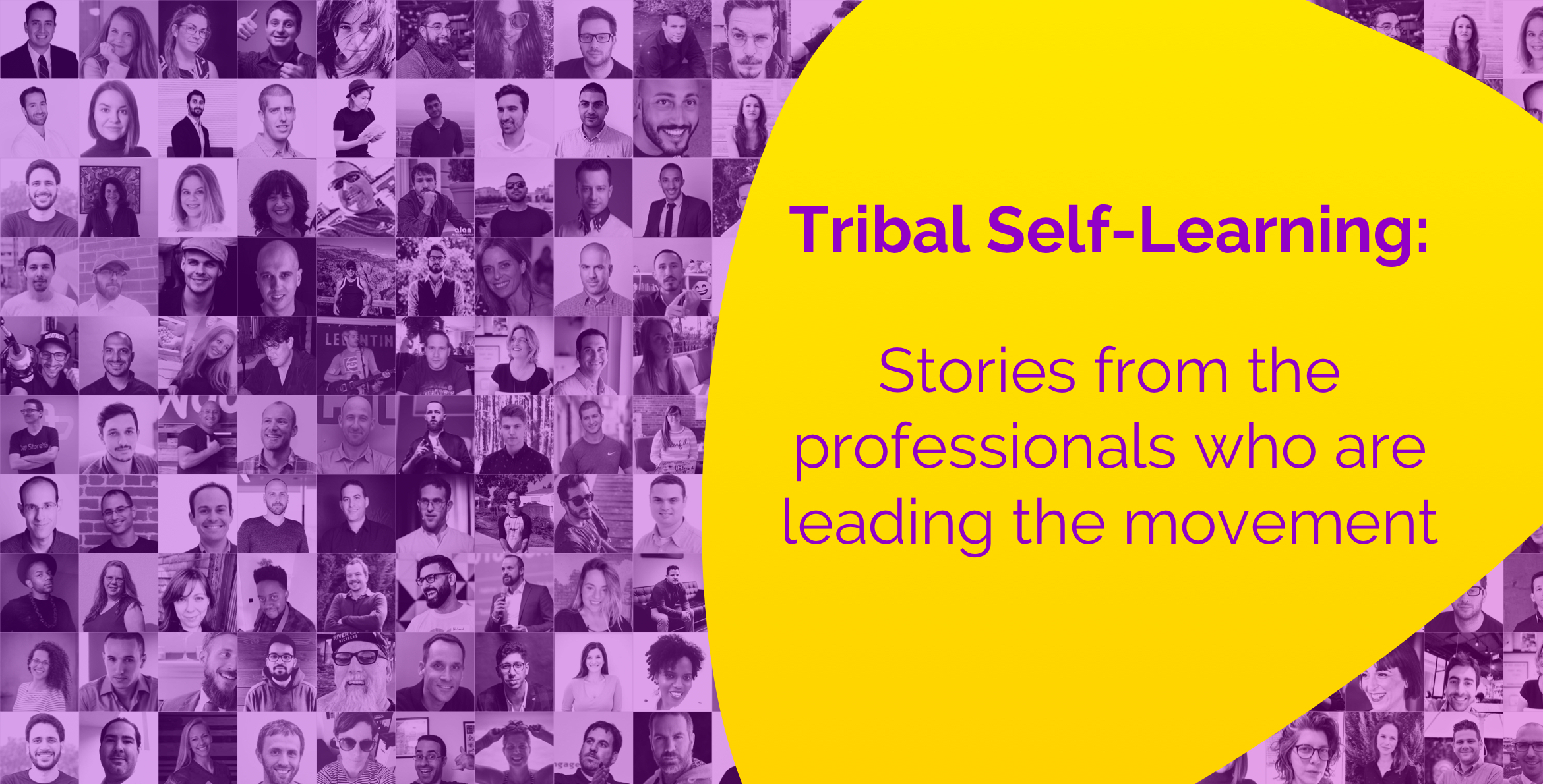 The Tribal Self-Learning Movement My Only Career Plan images of the contributors of stories in support of Zest Enlight